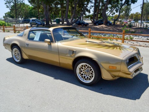 1978 Pontiac Trans Am for sale