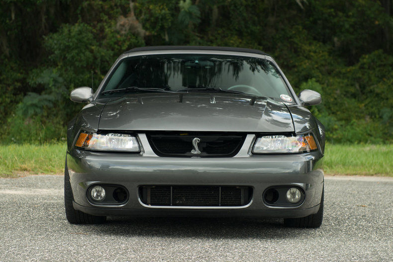 2003 ford mustang svt cobra convertible for sale. Black Bedroom Furniture Sets. Home Design Ideas